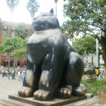 medellin fat cat