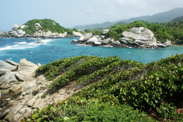 tayrona rocks and cactus